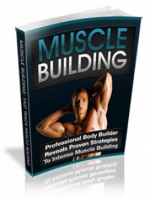 Product picture Muscle Building ebooks with PLR